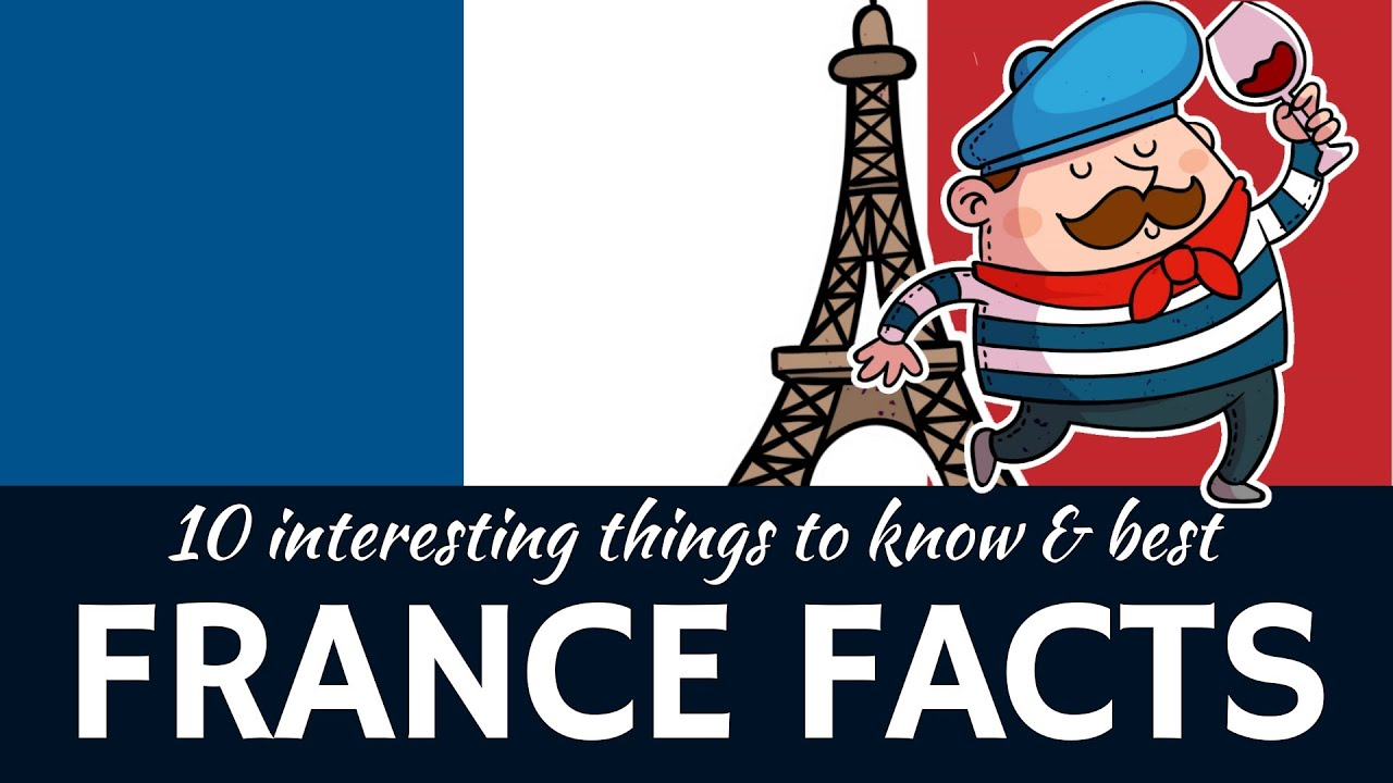 France  10 Inter...10 Interesting Albatross Facts For Kids