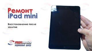 видео Ремонт iPad Mini Retina