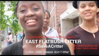 East Flatbush Litter - #SaveACritter