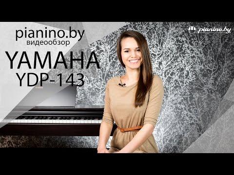 Обзор цифрового пианино Yamaha YDP-143 от Pianino.by