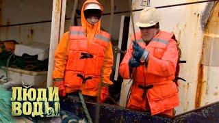 Мурманск | Люди воды 🌏 Моя Планета