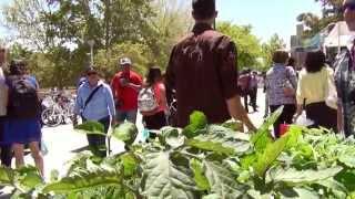 Sustainability @ UNM: Student Involvement