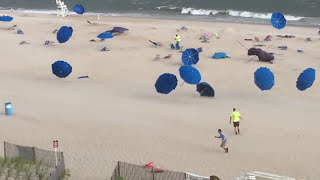 Attack Of The Killer Beach Umbrellas