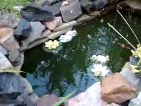Маленький пруд своими руками - легко и недорого