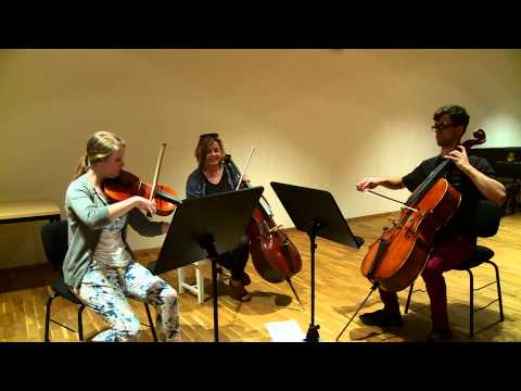 Leipzig Bach Festival 2014 • German Polish Orchestra Academy »b@ch for us!«