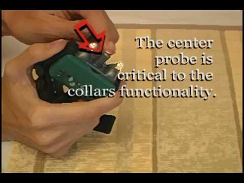 Guardian Bark Control Collar Instructions Youtube