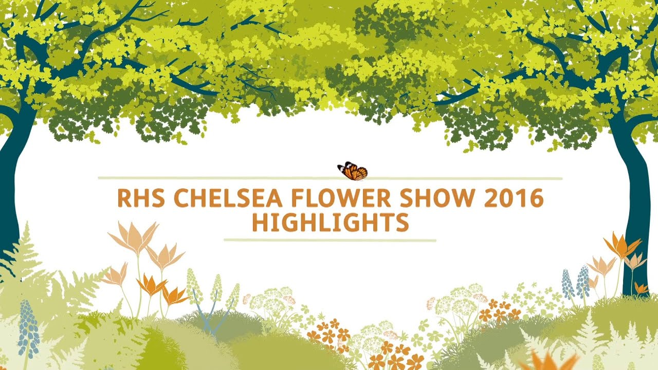 Chelsea flower show 2017 corporate entertainment packages - Chelsea Flower Show 2017 Corporate Entertainment Packages 34