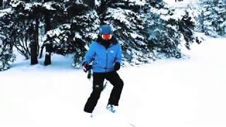Скачать Skizee Woodsrunner Power Skiing