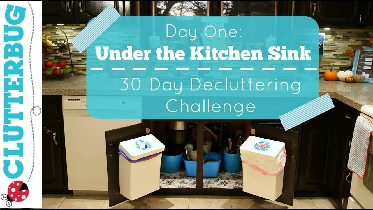 Day One - UNDER THE KITCHEN SINK - 30 Day Decluttering Challenge ...