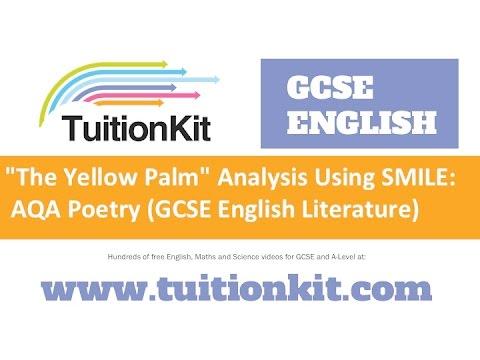 yellow palm analysis