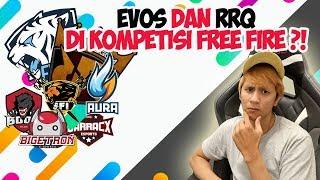 EVOS DAN RRQ JOIN TURNAMEN FREE FIRE ?!