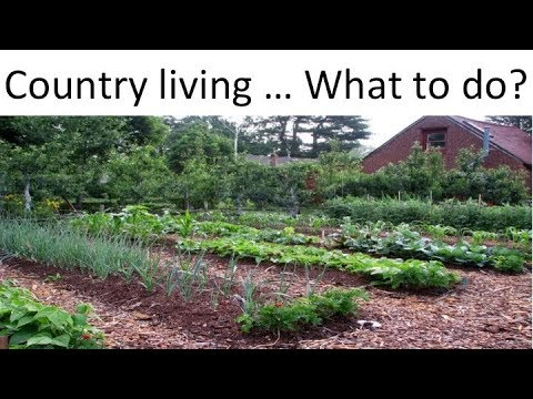 Country Living Part 2: Practical Country Living