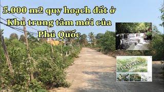 image Bán đất phú quốc 5.000 m2 quy hoạch đất ở, gần khu trung tâm Phú Quốc giá 4 triệu/m