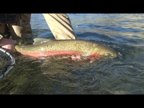 Fly Fishing Washington State: Methow River Steelhead March: Trailer For Show Amazon Video Season  11