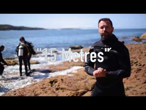 Sydney Dive Sites - The Steps