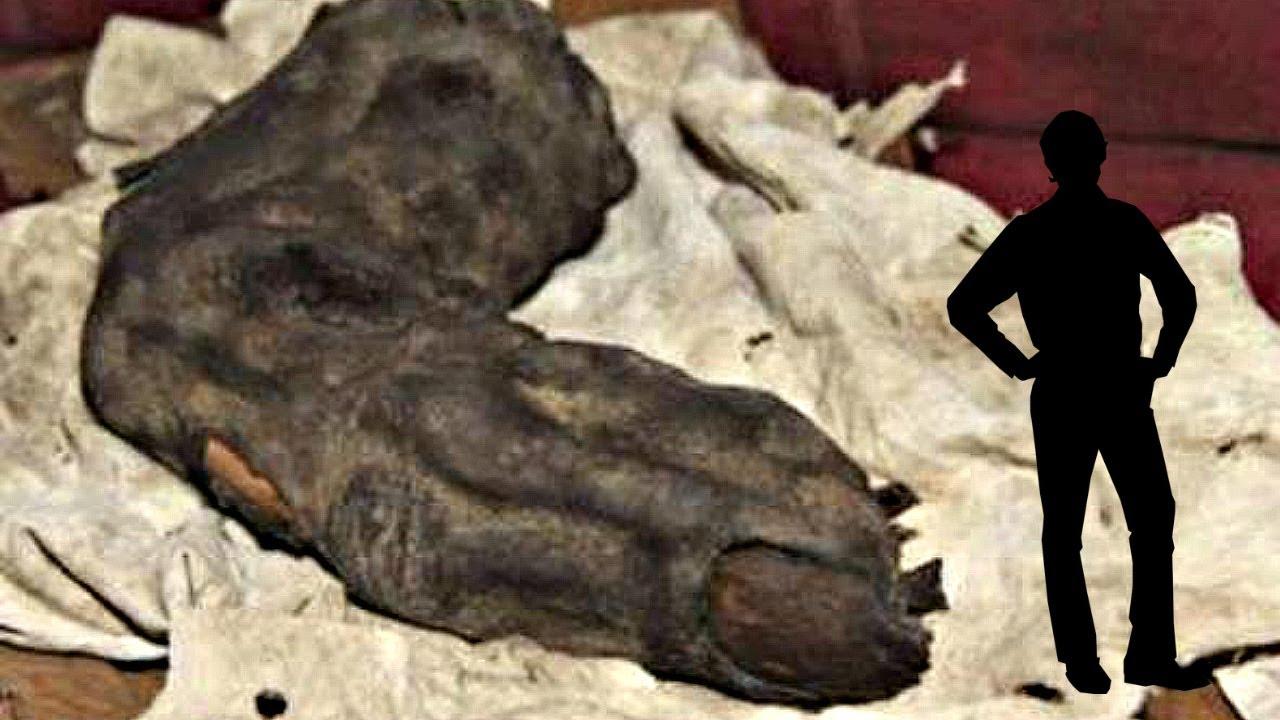 Необъяснимые археологические находки видео.
