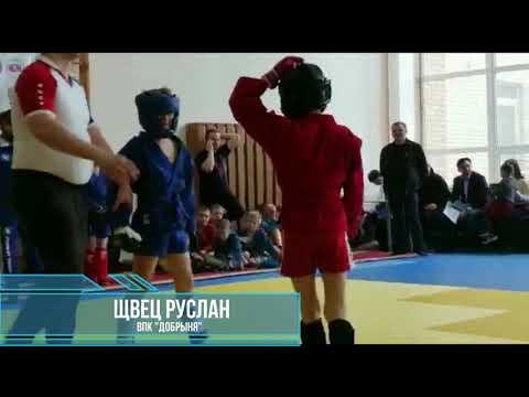 Кубок Всемирной Федерации  Боевого самбо г.Мытищи