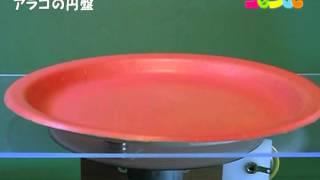アラゴの円盤