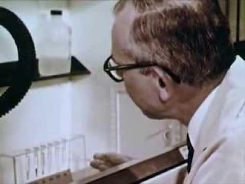Transuranium Elements Discovery: Transuranium Elements (1962) - CharlieDeanArchives