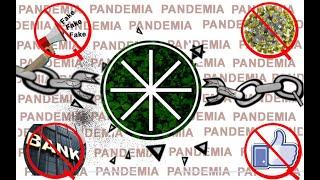 EL MEJOR VIDEO PANDEMIA Y ECOLOGENIA