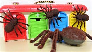 トーマス、カーズ、タヨ、おもちゃのクモのモンスターと大きなワニのおはなし