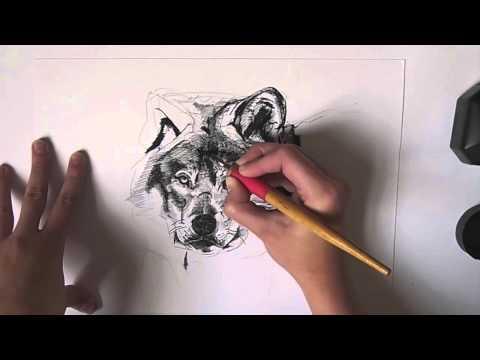 Kuretake ZIG Cartoonist Dip Pen drawing of a Wolf