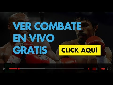 Image Result For Vivo Vs En Vivo Gratis Vivo