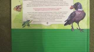 Николай Сладков: Лесные тайнички. Рассказы о природе