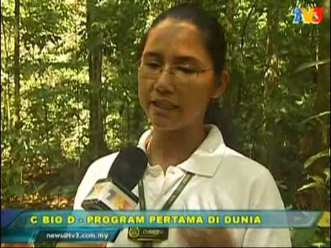 Hari Biodiversiti on TV3 Buletin Utama 21 May 09 Travel Video