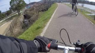 170304A bike宇治川水管橋~京阪宇治駅