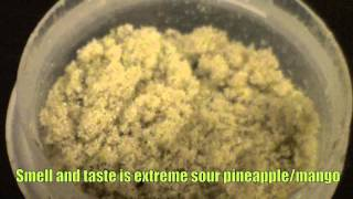 Dry Sift from Master Kush Trim - Hits off titanium nail