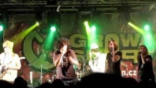 """""""Sexy sexy - Miss independent riddim"""" King Kalabash & U-Cee and Riddimshot at Reggae Meeting 2010"""