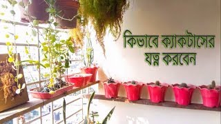 How to take care of your cactus plant in Bangla [HD]