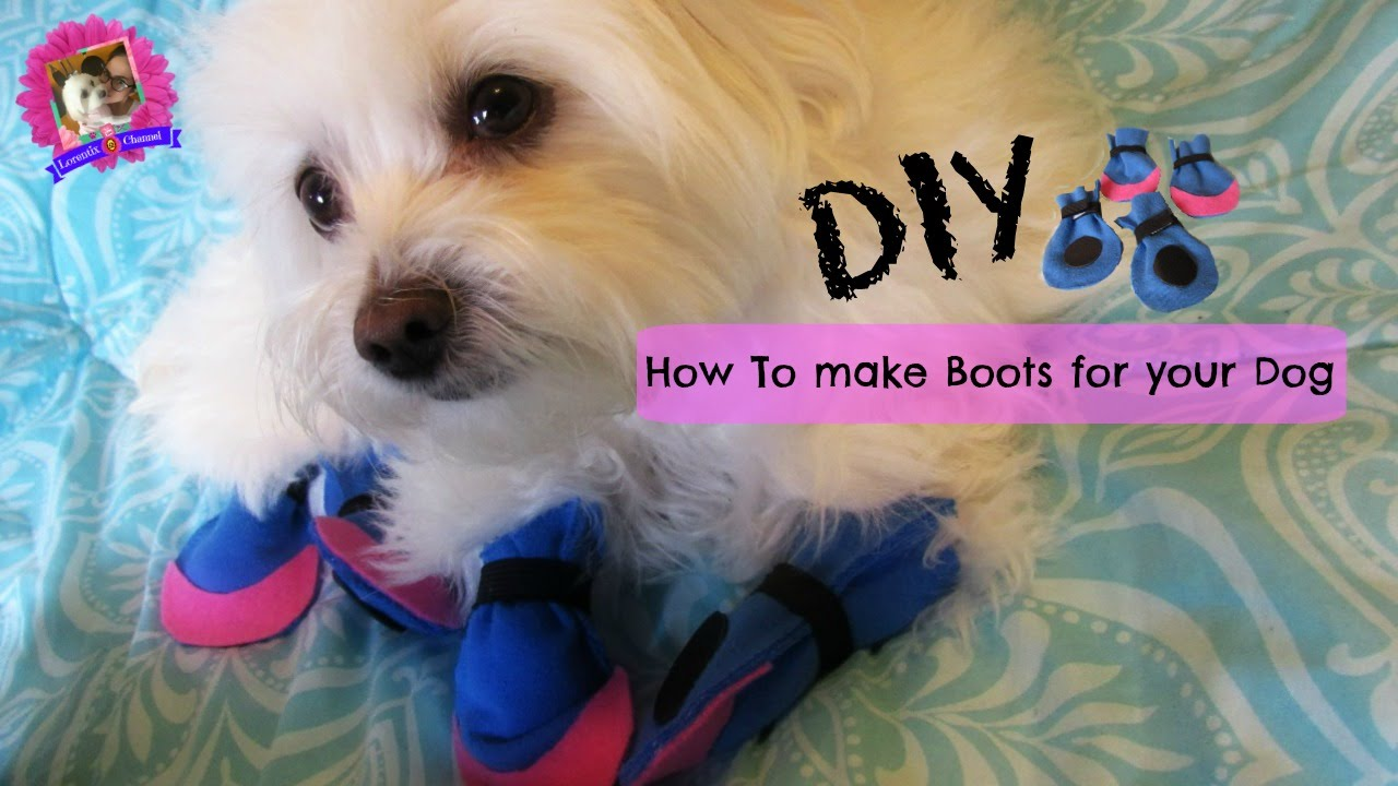 How to make boots for dogs diy no sewing coton de tulear i how to make boots for dogs diy no sewing coton de tulear i lorentix solutioingenieria Gallery