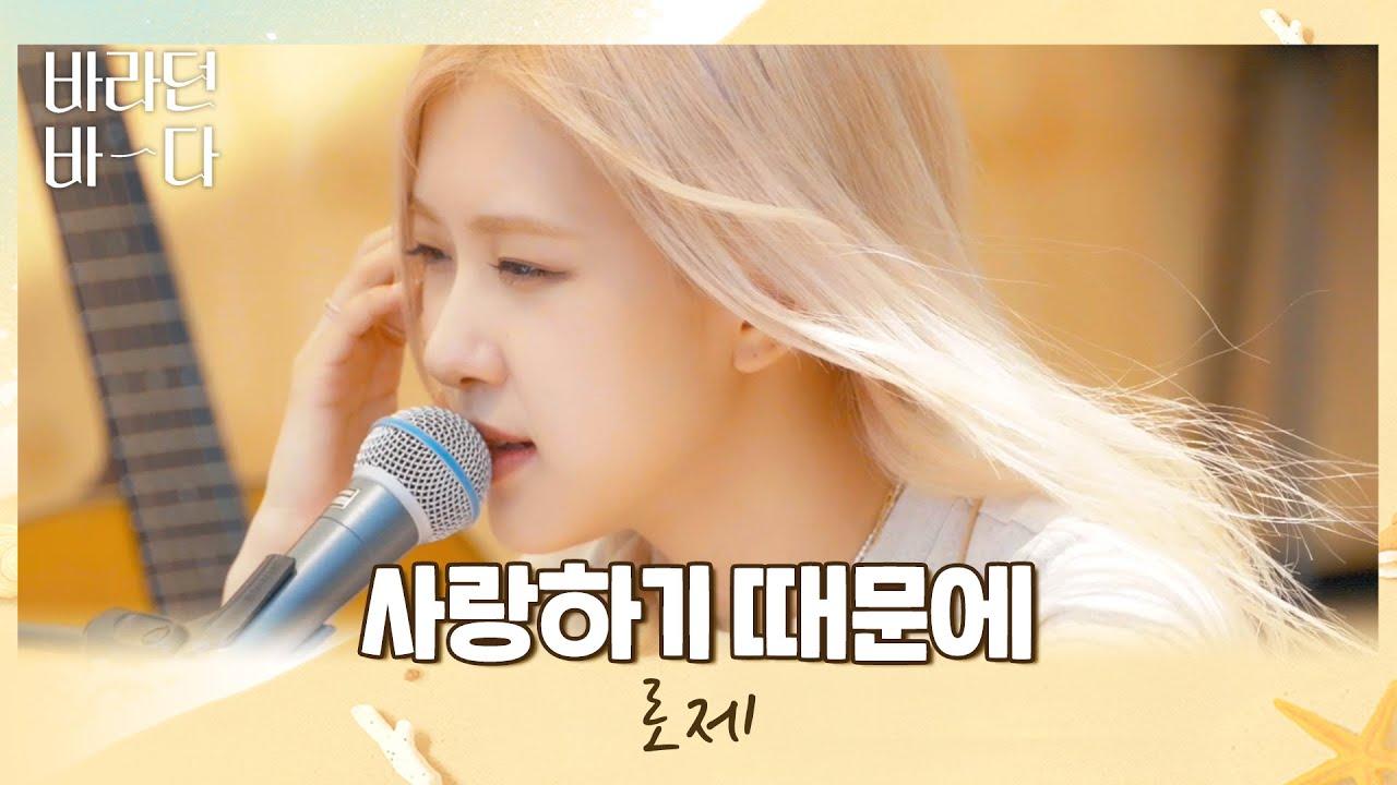 Download 따사로운 햇살과 함께❣ 로제(ROSÉ)의 〈사랑하기 때문에(Because I Love You)〉♬ 바라던 바다(sea of hope) 3회 | JTBC 210713 방송