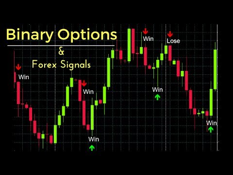binary options forex signals