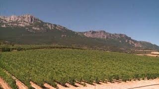 Spanish region uses wineries to draw tourists inland