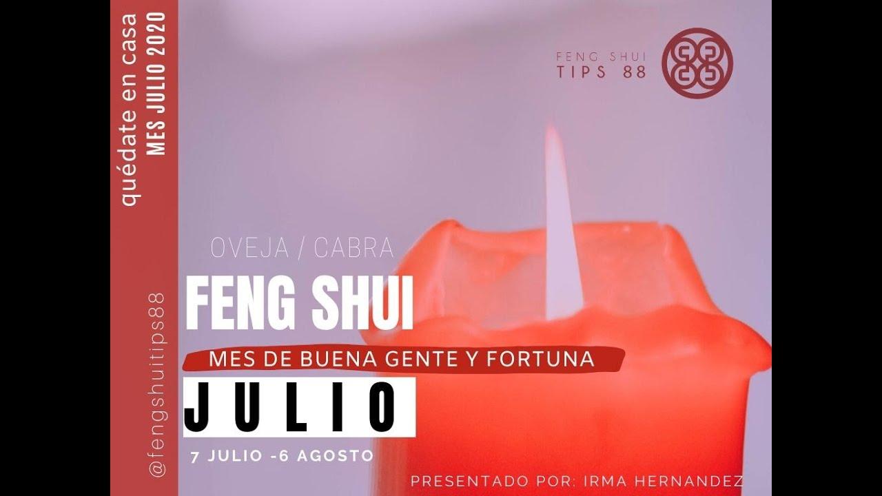 FENG SHUI JULIO 2020 MES DE LA CABRA U OVEJA  ESTRELLAS VOLADORAS