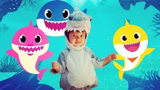Baby Shark Song | Baby Shark Dance | Kids Songs and Nursery Rhymes | Songs for babies