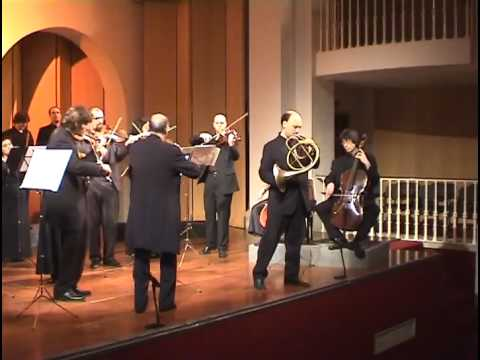 French Horn Concerto for natural horn KV417 I Mozart