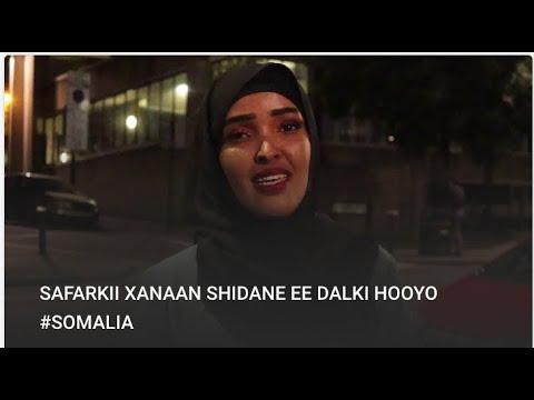 SAFARKII XANAAN SHIDANE  EE DALKI HOOYO #SOMALIA