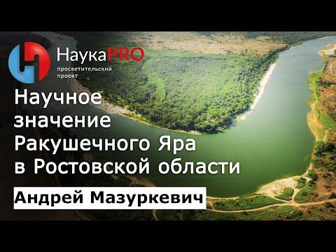 Андрей Мазуркевич - Научное значение многослойного поселения Ракушечный Яр