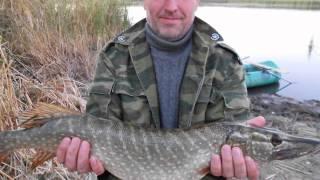 рыбалка на кушуме 2012