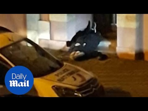 Moment Strasbourg attack suspect is shot dead by French police