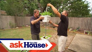 How to Install a Self-Watering Garden