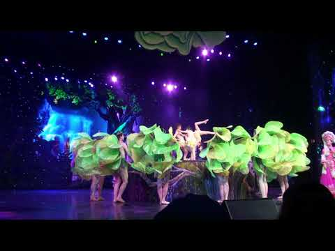 Wu Ling Yuan Incredible Musical Stage Show China