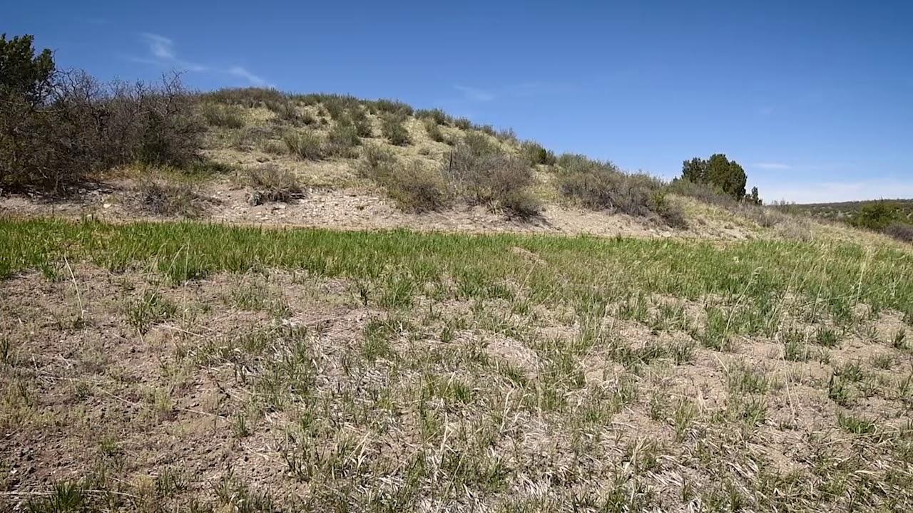 SOLD -  0.3 Acres - In Colorado City, Pueblo County CO