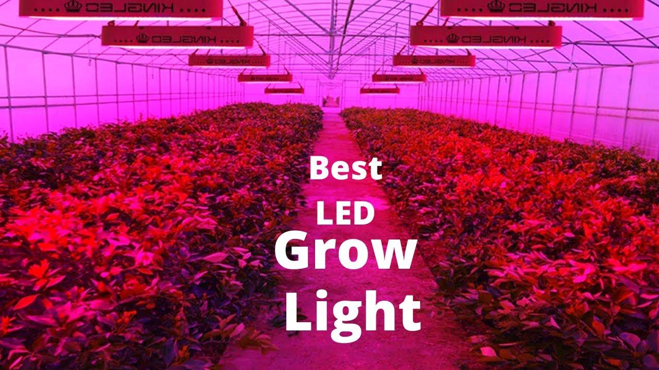 Download 10 Best Led Grow Light 2020