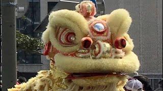 Lion dance 獅子舞がやって来た~! 本祭り 酒田まつり2019 00065