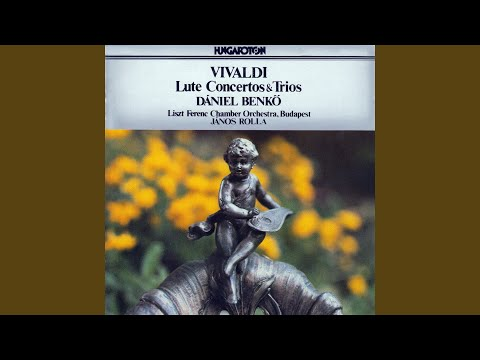 Concerto For Lute, Strings And Harpsichord In D Major: II. Largo